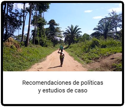 Recomendaciones de políticas y estudios de caso